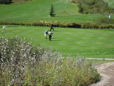 Beaver Dam Golf Course Alberta